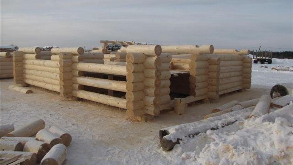 Баня рубится из зимнего леса